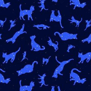 Constellation Cats