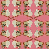 2941 Australian Finches#1 Pink Deep