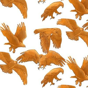 Golden Eagles on White