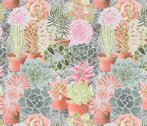 Mon_jardin_de_succulents_shop_preview