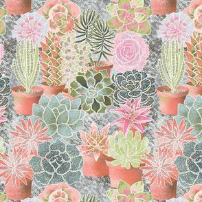 mon_jardin_de_succulents