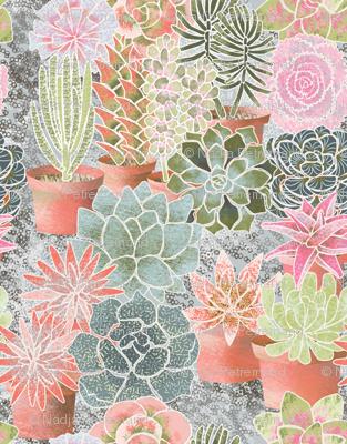 mon_jardin_de_succulents_M