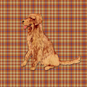Golden Retriever on Plaid for Pillow