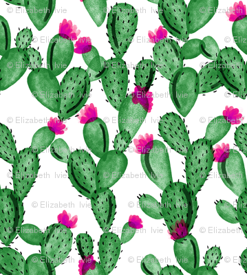 emerald paddle cactus + rose