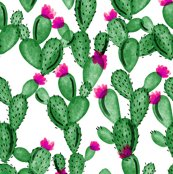 Rev6301677_remerald-cactus-and-rose-fabric_shop_thumb
