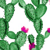 6301679_remerald-cactus-and-rose-fabric_shop_thumb