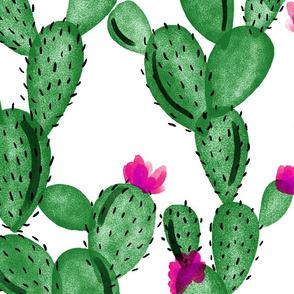 emerald paddle cactus + rose // oversized