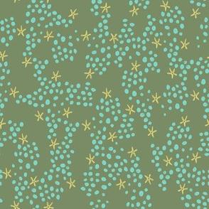 Starfishes_olive