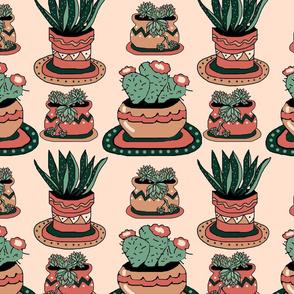 ltd_succulent_pots_4