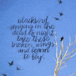 blackbird_fly_TT