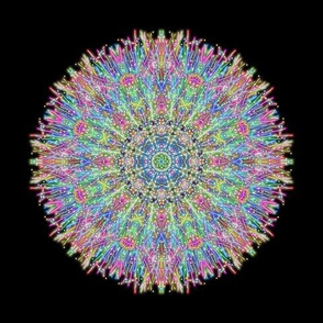 Neon Dandelion