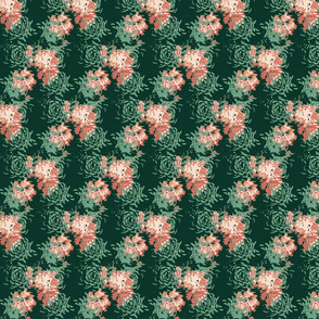 Flowering Succulents - Limited Color Palette