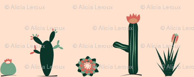 Pink and green succulents