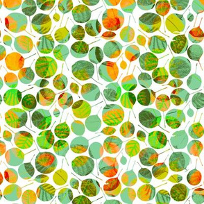 Green and orange round leaves