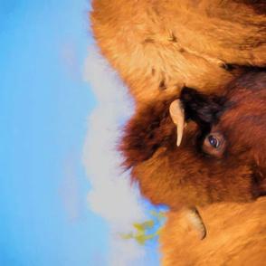 SW_bison_TT