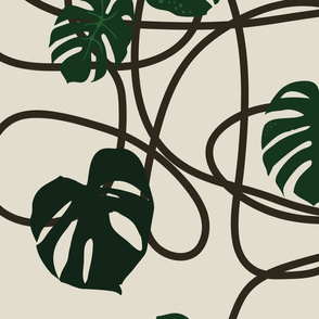 monstera-large