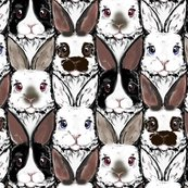 Rrbunch_of_bunnies_shop_thumb
