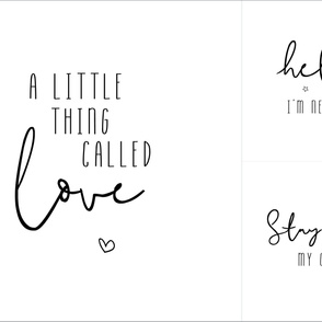 Blanket + Loveys // A little thing called love // Hello I'm new here // Stay wild my child