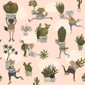 the succulent snatchers