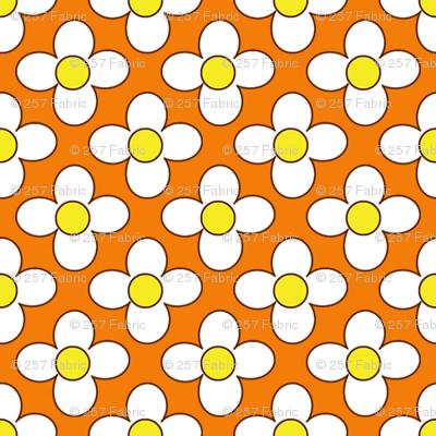 flowerword_whitehana__orange