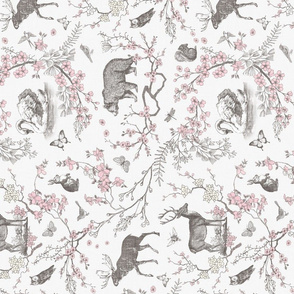 Spring Toile (Grey +Pink) RAILROAD