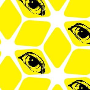 Sherbert Eyes
