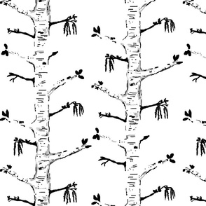 Home Sweet Blooming Birch -black n white