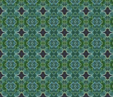 Rsucculent3x4_shop_preview