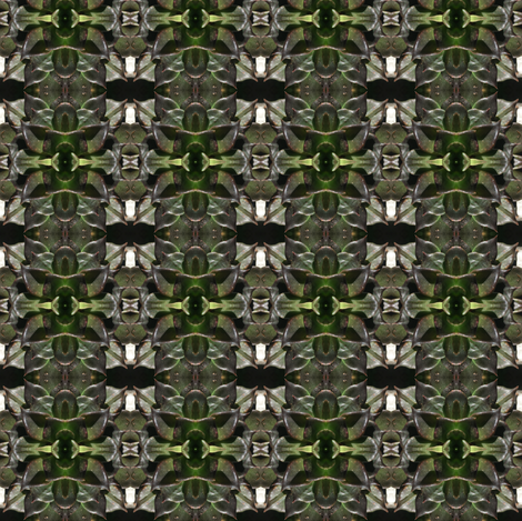 succulence 4 fabric by hypersphere on Spoonflower - custom fabric