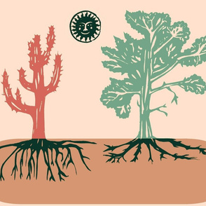 Root Systems of  Succulents Differ From Other Plants