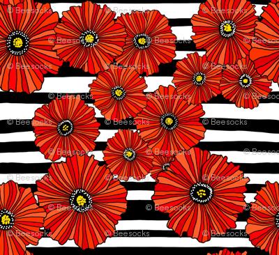 Black and white poppy stripe