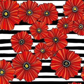 Black and white poppy stripe