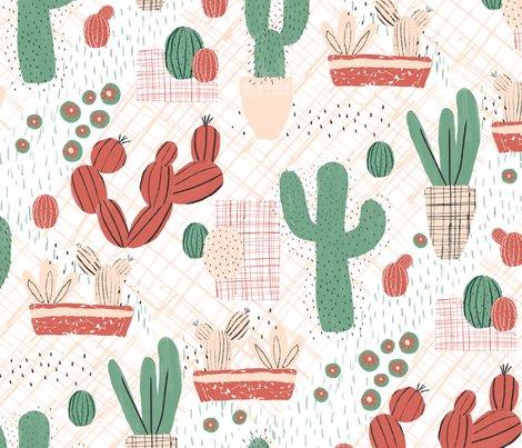 Rsucculent-picnic2_shop_preview