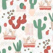 Rsucculent-picnic2_shop_thumb