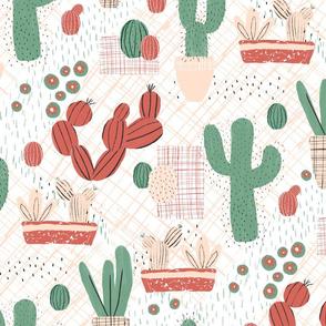 Succulent Picnic