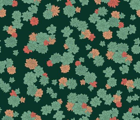 R201704_succulents_21x18_shop_preview