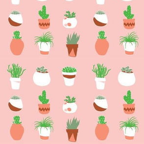 Potted Succulents in Bright Pink // Cacti and Terracotta pots // Desert chic by Zoe Charlotte