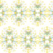 2941 Phebalium Central Motif Portrait.ed