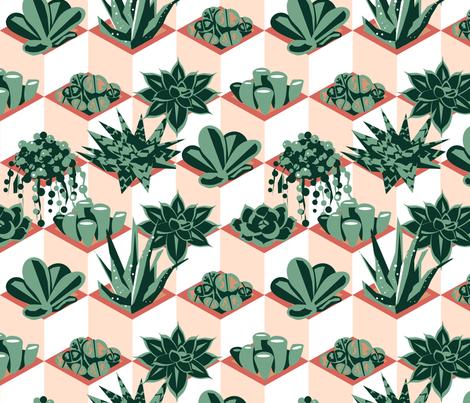 Succulents Galore fabric by tangolikeamango on Spoonflower - custom fabric