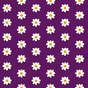 It's Been Gnome 2 Happen! daisies on purple