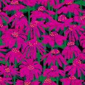 paper-cut coneflowers