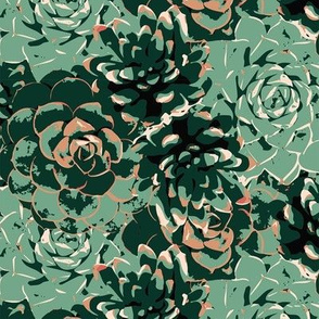 Stacks of Succulents