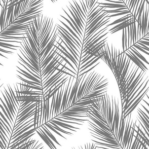 palm leaves - gray on white, small. silhuettes tropical forest gray white hot summer palm plant tree leaves fabric wallpaper giftwrap