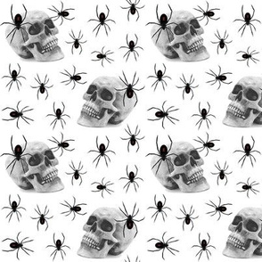 spiders and skull
