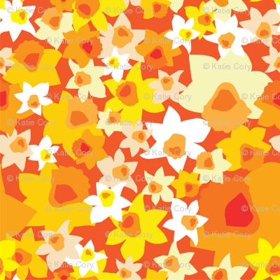 kcorydaffodils