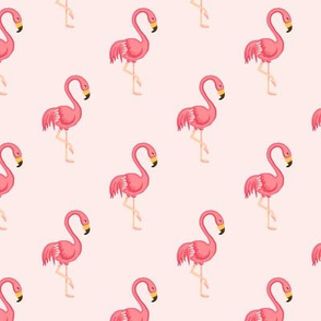 Flamingo Midscale Blush