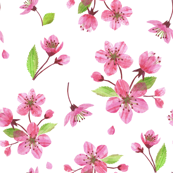 Blossoms Collage