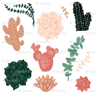 Darling Succulents - Larger Size