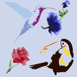 Toucan and Hummingbird