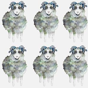 Nordic Sheep